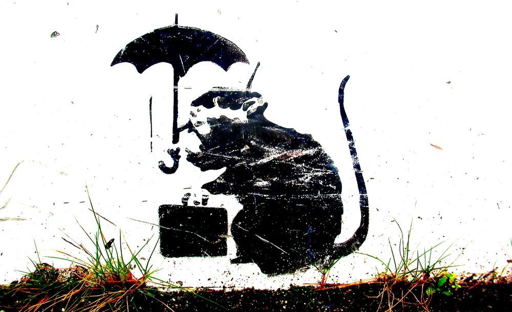 バンクシーが香川県に?高松にネズミのイラストが?絵は本物なの?