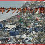 海洋プラスチック汚染問題と現状の対策に食事の選択?ヴィーガンがヒントに?
