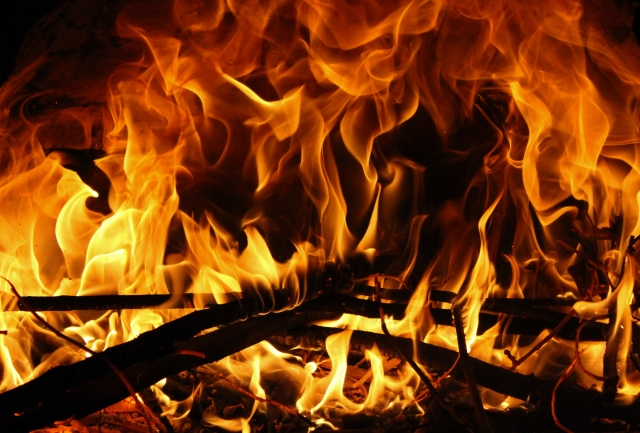 100日後に死ぬワニが炎上した理由と作者きくちゆうきの欲と自信の考察1