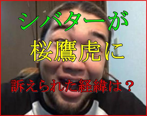 桜鷹虎シバター